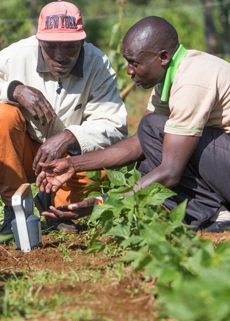 "SoilCares Foundation survey: ""Soil testing technology popular with Kenyan farmers; 84% want to continue using it for testing their soils."""