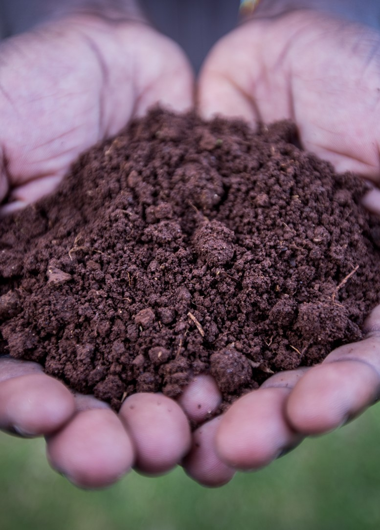 Agricultural innovation in Africa starts with soil analysis