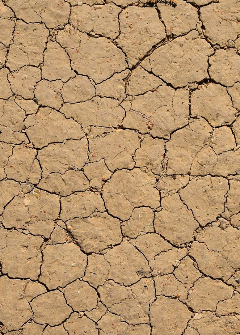 The dualistic role of soil and climate change: why soil is both a victim and a culprit of climate change